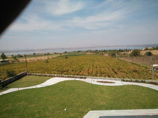 York-Winery